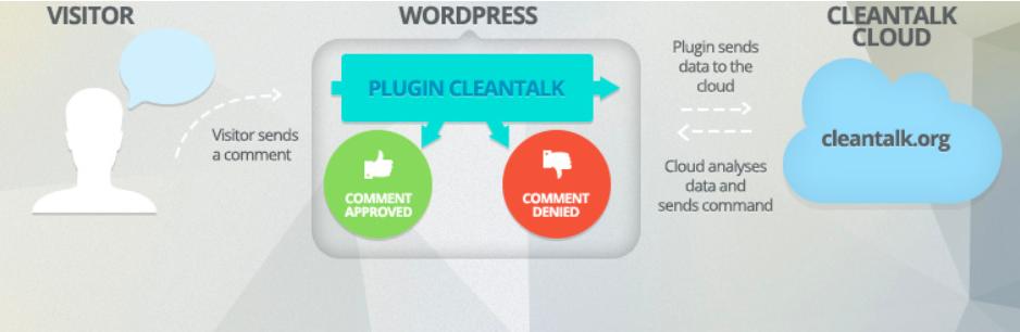wordpress plugin security vulnerabilities
