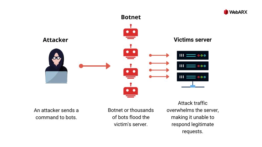 Denial Of Service Attacks (DoS/DDoS)